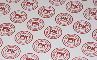 PK Models